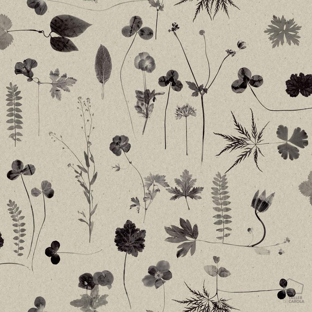 Papel Pintado Botánica Gris Bot 0693662__sim_bot