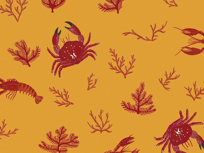 papel-pintado-cangrejos-naranja