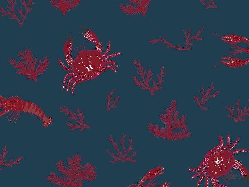 069cru5900042 Papel Pintado Cangrejos Corales Azul