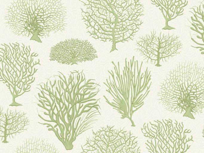 Papel Pintado Corales Verde