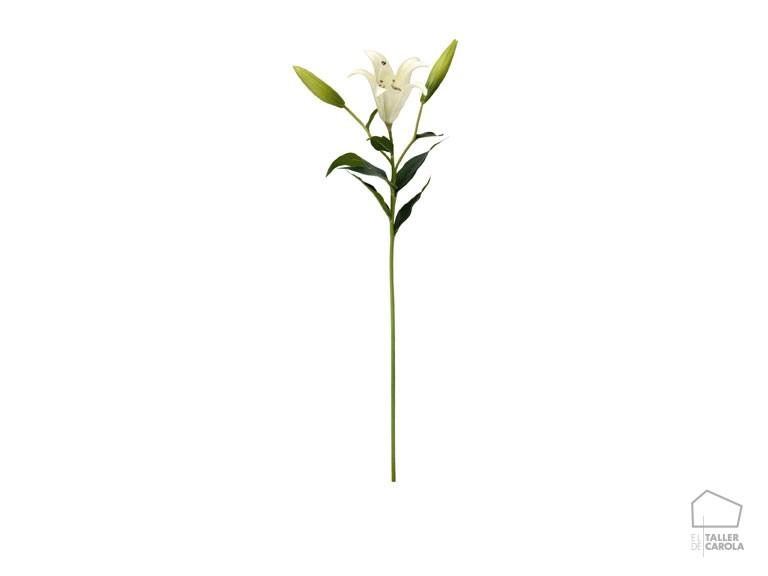 086flr0001 Flor Lirio