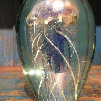 Medusa Cristal Azul