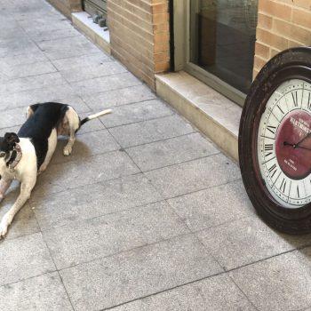 Reloj Circular Vintage Granate